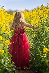 Fotos Raps Kleine Mädchen Blondine Kleid Hinten