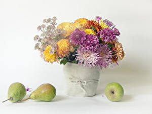 Picture Still-life Mums Pears White background Vase Flowers