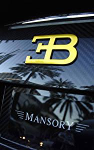 Fotos Großansicht BUGATTI Hinten Karbon veyron mansory Autos