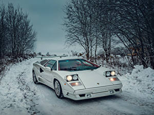 Fotos Lamborghini Antik Weiß 1988-1990 Countach 25 Anniversary with option Rear Wing Worldwide
