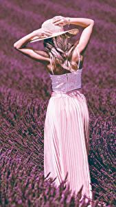 Hintergrundbilder Felder Lavendel Blondine Hand Der Hut Mädchens