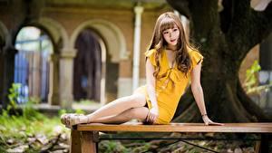 Fotos Asiatische Posiert Sitzend Kleid Braune Haare Bein Mädchens