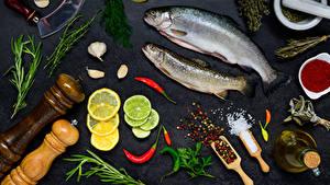Image Seafoods Fish - Food Lemons Dill Spices Allium sativum Gray background Salt Food