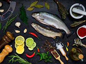 Hintergrundbilder Meeresfrüchte Fische - Lebensmittel Zitrone Dill Gewürze Knoblauch Grauer Hintergrund Salz Lebensmittel