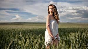 Hintergrundbilder Acker Kleid Braunhaarige Model Aleksandra, Alexey Yuryev