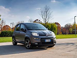 Bilder Fiat Grau Hybrid Autos Panda Sport Hybrid, (319), 2020 Autos