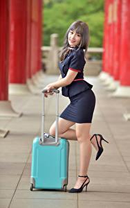 Bilder Asiatische Posiert Bein Koffer Uniform Starren Flugbegleiter junge Frauen