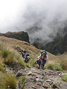 Bilder Peru Steine Berg Bergsteigen Nebel Weg Gras Spaziergang Cuzco, Machu Picchu, South America