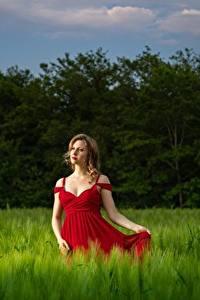 Bilder Felder Weizen Kleid Haar Pose Hand junge frau