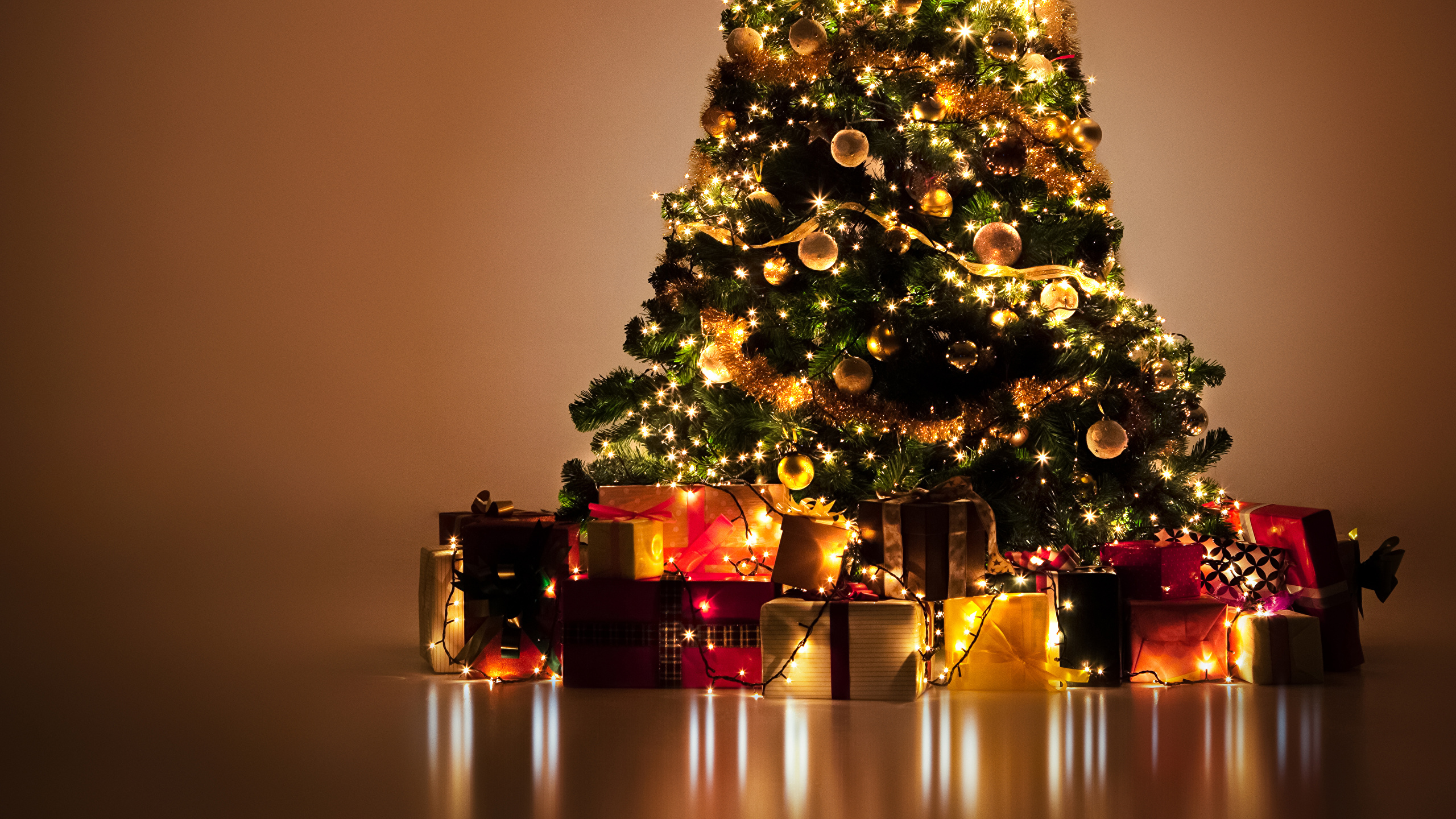 Picture Christmas New Year Tree Present Fairy Lights 2560x1440