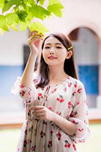 Fotos Asiatische Kleid Hand Ast Blattwerk Unscharfer Hintergrund Mädchens