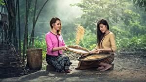 Fotos Asiatische Getreide 2 Sitzend Brünette Mädchens