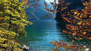 Papéis de parede Alemanha Lago Outono Pedras Galho Konigsee