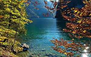 Hintergrundbilder Deutschland See Herbst Steine Ast Konigsee Natur