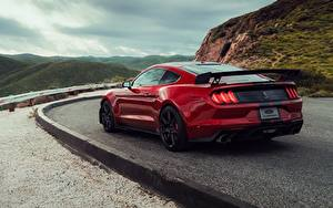 Fotos Ford Rot Hinten Mustang Shelby GT500 2019 Autos