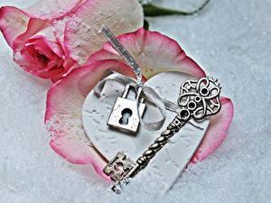 Hintergrundbilder Valentinstag Rosen Grauer Hintergrund Rosa Farbe Schlüssel Herz Blumen