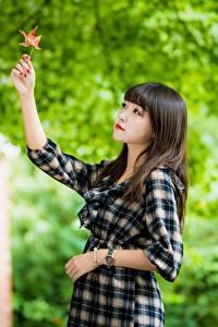 Fonds d'écran Asiatique Bokeh Feuillage Cheveux noirs Fille Les robes