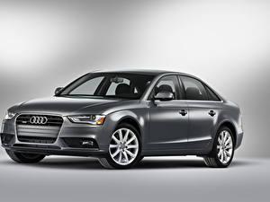 Photo Audi Gray Metallic  auto
