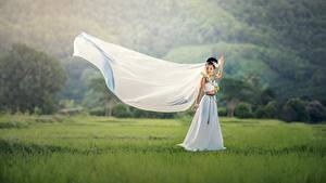 Pictures Asiatic Bride Brunette girl Frock Grass Noces