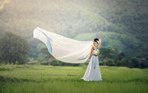 Fotos Asiatische Brautpaar Brünette Kleid Gras Heirat Mädchens