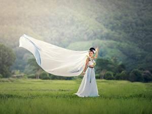 Fotos Asiatische Brautpaar Brünette Kleid Gras Heirat