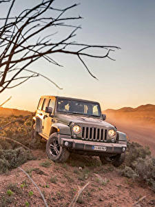 Fotos Jeep Grau 2016 Wrangler Unlimited  75th Anniversary auto