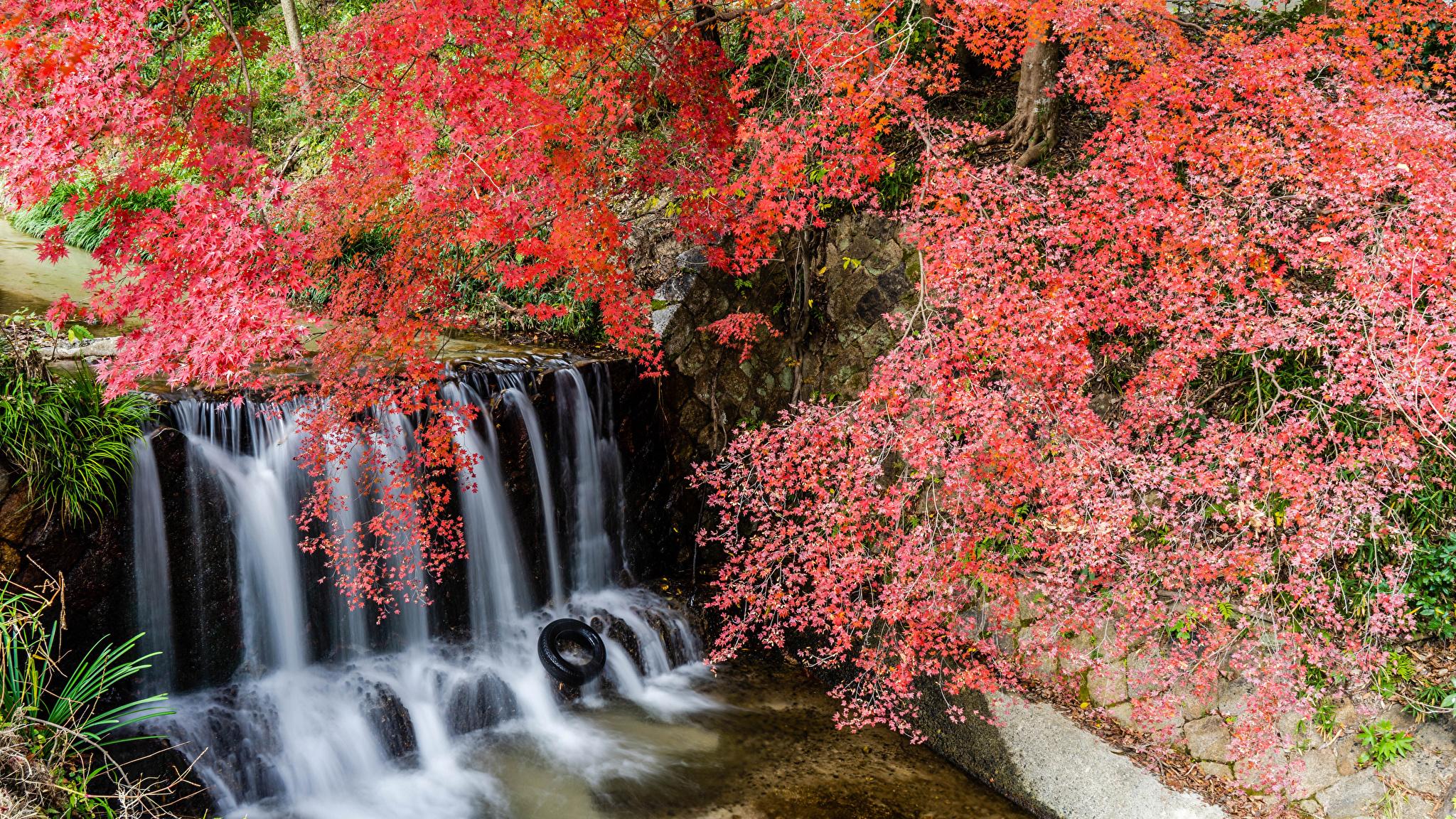 Hintergrundbilder Japan Shiga Natur Felsen Wasserfall Park Ast 2048x1152