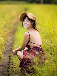 Desktop hintergrundbilder Acker Asiatische Unscharfer Hintergrund Sitzt Kleid Rücken Der Hut Brünette Blick junge frau