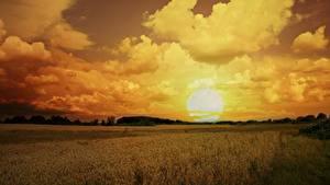 Bilder Acker Himmel Sonnenaufgänge und Sonnenuntergänge Wolke Sonne