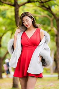Fotos Asiaten Kleid Rot Unscharfer Hintergrund junge frau