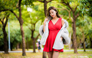 Photo Asiatic Frock Red Blurred background young woman