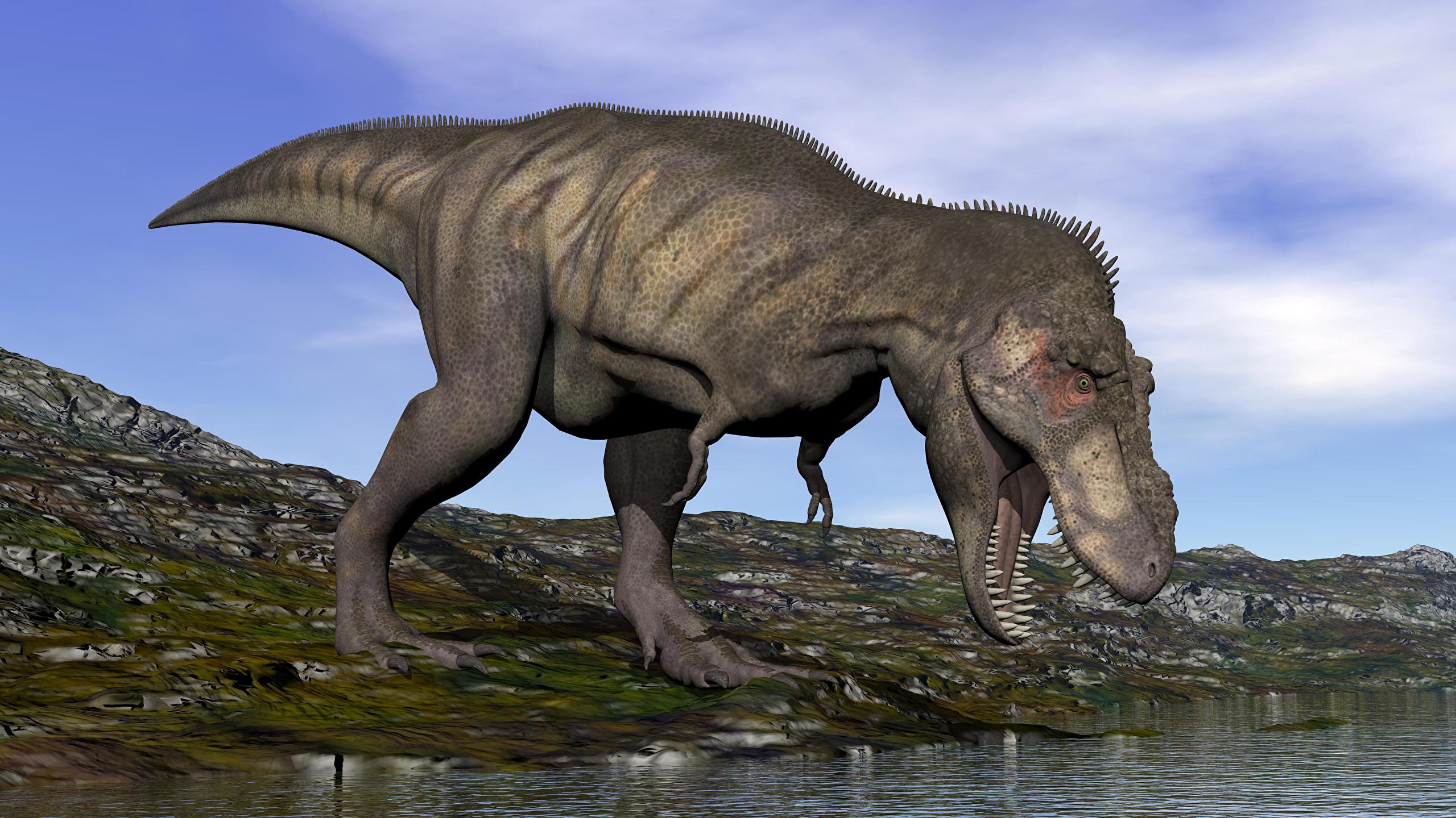 Wallpaper Dinosaurs 3d Graphics Water Animal Closeup 2560x1440