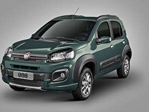Bilder Fiat Grauer Hintergrund Grün 2016 Uno Way Autos