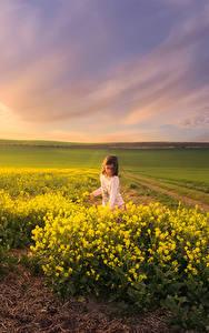 Hintergrundbilder Landschaftsfotografie Sonnenaufgänge und Sonnenuntergänge Felder Raps Lichtstrahl Kleine Mädchen