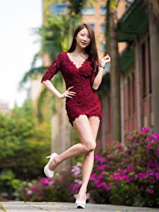 Bilder Asiaten Posiert Kleid Bein