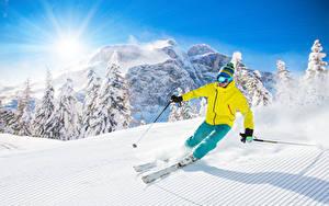 Bilder Skisport Winter Gebirge Mann Schnee Sonne Fichten Mütze Brille sportliches Natur
