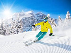 Bilder Skisport Winter Gebirge Mann Schnee Sonne Fichten Mütze Brille Sport Natur