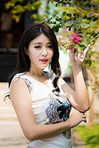 Hintergrundbilder Asiatisches Ast Kleid Hand Brünette Blick junge Frauen
