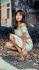 Hintergrundbilder Asiatische Sitzt Kleid Blattwerk Starren Mädchens