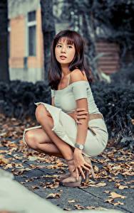Hintergrundbilder Asiatische Sitzt Kleid Blattwerk Starren