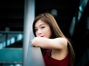 Bilder Asiatische Unscharfer Hintergrund Blick Braunhaarige Süße Mädchens