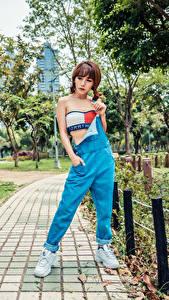 Bilder Asiatisches Pose Bäume Braunhaarige Mädchens