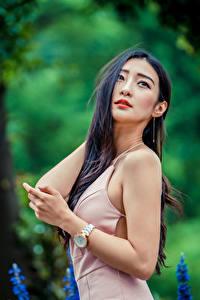 Bilder Asiatisches Unscharfer Hintergrund Posiert Kleid Hand Brünette Mädchens