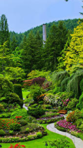 Bilder Kanada Garten Rasen Strauch Bäume Butchart Gardens Victoria