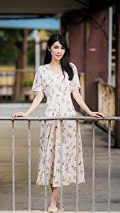 Fotos Asiatisches Unscharfer Hintergrund Kleid Hand Brünette Zaun junge Frauen