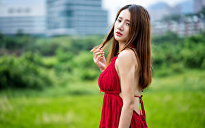 Picture Asian Brown haired Frock Glance Blurred background young woman