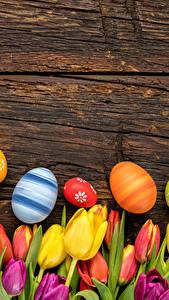 Bilder Feiertage Ostern Tulpen Bretter Ei Blüte