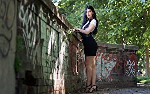 Bilder Brünette Bein Blick Martina junge Frauen
