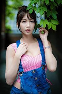 Hintergrundbilder Asiaten Bokeh Ast Braunhaarige Blick Hand junge frau