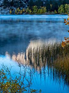 Bilder Vereinigte Staaten See Kalifornien June Lake Natur